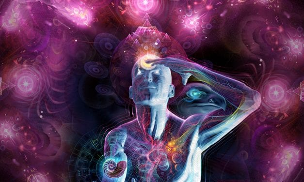No Need To Open Your Third Eye Pineal Gland… Its Already Open